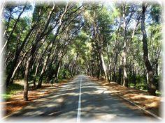 autor: XVII, misto radnje: Split Croatia, Nasa, Most Beautiful, Country Roads, World, Photography, Author, Photograph, Fotografie