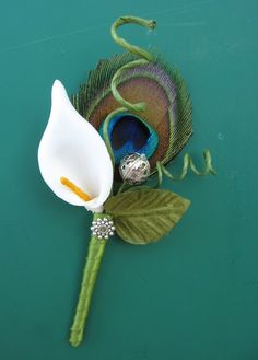 peacock wedding boutonniere with single cala lily Calla Lily Boutonniere, Boutonnieres, Peacock Theme, Peacock Wedding, Wedding Bouquets, Wedding Flowers, Wedding Buttonholes, Buttonhole Flowers, Wedding Corsages