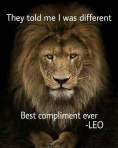 Lion is the king of the jungle and a Leo man is the king of the zodiac. Just find out how to attract him and become his queen. Leo Zodiac Facts, Zodiac Quotes, Pisces Zodiac, Citation Lion, Ascendant Lion, Lion Quotes, Quotes With Lions, Tiger Quotes, Affirmations Positives