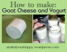 How to make goat cheese and yogurt.very thorough instructions for hard cheese(with color, rennet, and cultures added) Goat Milk Recipes, Goat Cheese Recipes, No Dairy Recipes, Cheese Dips, Dip Recipes, Butter Cheese, Milk And Cheese, Goat Meat, How To Make Cheese