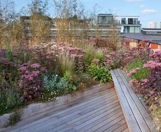 Prairie style planting on this roof terrace in East London creates a soft backdrop to the industrial architecture. Terrace Garden Design, Rooftop Garden, Garden Seating, Balcony Garden, Urban Garden Design, Terraced Landscaping, Green Terrace, Prairie Garden, Outdoor Pergola