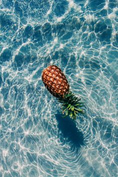 Un bel ananas dans sa piscine. - A beautiful pineapple in your pool. Tumblr Photography, Photography Ideas, Vintage Photography, Modeling Photography, Framing Photography, Dslr Photography, Water Photography, Photography Magazine, Summer Of Love