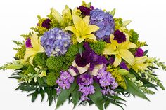 https://steepster.com/funeralplantstrees  Full Report About Plants For A Funeral  Believe You're Suited Doing Potted Plants For Funerals? Take This Test.15 Best Blog Sites To Follow Concerning Potted Plants For Funerals