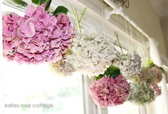 Dried Hydrangea - Katies Rose Cottage
