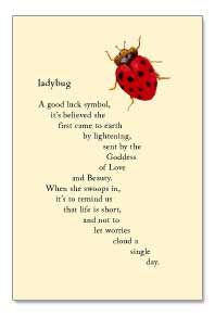 Ladybug--a good luck symbol, it's believed she first came to earth by lightening, sent by the Goddess of Love and Beauty...