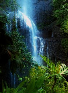 ✯ Dark Falls - Maui  Someday I will see these! My bucket list.