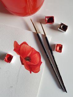 Poppy watercolor illustration by Studio Sonate Watercolor Illustration, Poppy, Studio, Prints, Design, Studios, Poppies, Watercolour Illustration