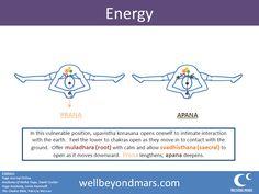 Yoga Asana of the Week: Wide Legged Forward Fold