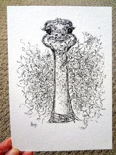 Young Ostrich Art Print Animal Bird Grass Flower by ArtbyAeris