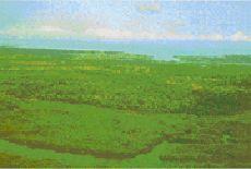 Guiné-Bissau.
