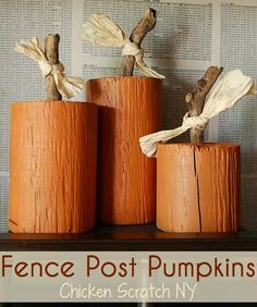 DIY Fall Pumpkin Roundup