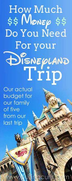 How much money should I bring to Disneyland?   Disneyland buget tips   cash   planning   hotel   tickets   souveniers   planner   money
