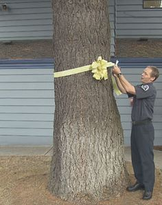 Firefighter Murray cuts the yellow ribbon off the tree outside now open fire station 6 - Vancouver, WA USA