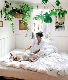 bedroom inspiration, hanging plants, white and bright, cute doggo