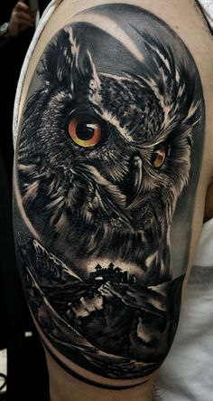Today we're going to step again into the world of animal tattoos bringing you 50 of the most beautiful owl tattoo designs, explaining their meaning. Owl Tattoos On Arm, Owl Tattoo Chest, Owl Eye Tattoo, Mens Owl Tattoo, Animal Sleeve Tattoo, Cute Owl Tattoo, Lion Forearm Tattoos, Cool Chest Tattoos, Best Sleeve Tattoos