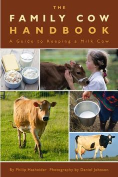 Bestseller Books Online The Family Cow Handbook: A Guide to Keeping a Milk Cow Philip Hasheider $13.05  - http://www.ebooknetworking.net/books_detail-0760340676.html