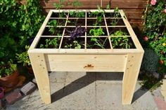 Planter on a square foot urban garden designs and construction drawings. In t… - Modern
