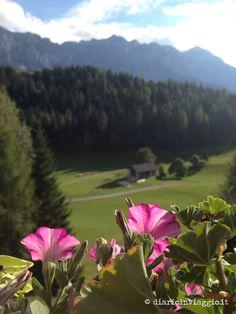View from Rifugio Caltena near Pale di San Martino in the mountains in Trentino in Italy