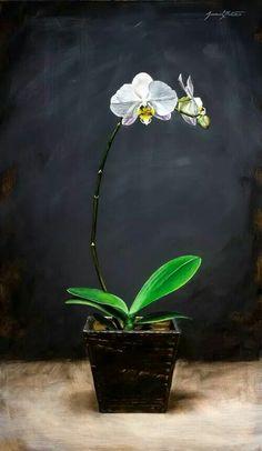 "Arts At Denver   Jeremiah White ""White Orchid"""