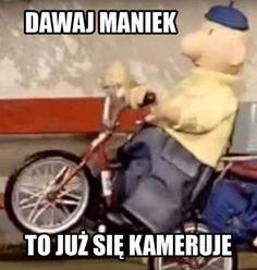 Very Funny Memes, Wtf Funny, Polish Memes, Komodo Dragon, Auras, Best Memes, Cringe, Fnaf, Funny Pictures