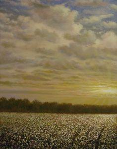 Mississippi Delta Cotton Field