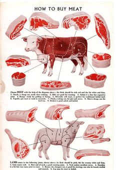 How to buy meat - doesn't look grass fed, lol....
