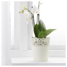 IKEA - SKURAR Plant pot off-white indoor/outdoor,