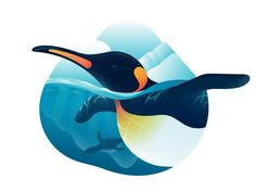 This is a selection of Dribbble shots posted through summer Illustrations reflect process of exploring textures and colors, using larger shapes to make a dynamic compositions, perfecting water drawing skills.This summer wouldn't be so productive w… Penguin Sketch, Penguin Logo, Flat Illustration, Graphic Design Illustration, Digital Illustration, Graphic Illustrations, Graphic Art, Water Sketch, Water Drawing