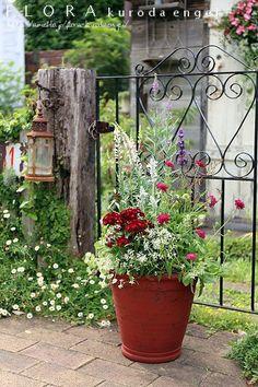 多肉植物を小鉢に。。。 の画像|フローラのガーデニング・園芸作業日記