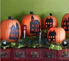 A pumpkin village!! How cool is that?