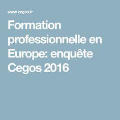 Formation professionnelle en Europe: enquête Cegos 2016