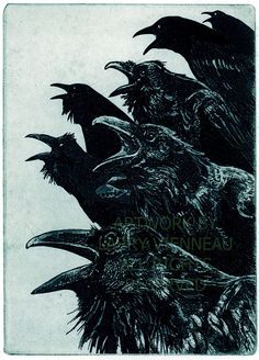 A murder of crows: INQUISITION (Raven (bird, crow) Series) Hand printed, Limited edition Intaglio Etching in Blue-black or Brown Ink 2011