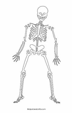 Halloween Coloring Pages. See More. Skeleton Day Of The Dead Outline Art