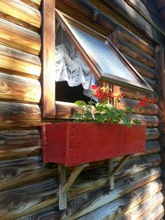 the red window box.