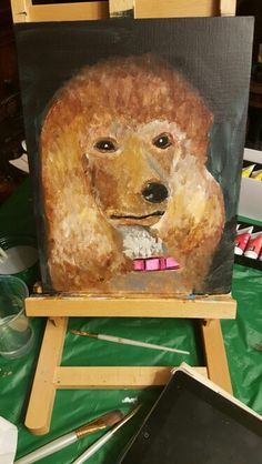 Aryclic painting of a poodle by Jennifer vargas