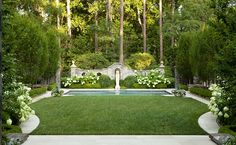 Manicured lawn framed by hornbeams + hydrangeas + boxwood :: Howard Design Studio