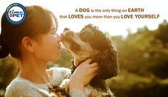 """Man's best friend"" #timeforpet #dogs #dog #doglove #doglovers #animallovers #animals #animallove #quotes #animalquotes #quoteoftheday #petcare #petlove #pet #pets #bangalore #wednesday"
