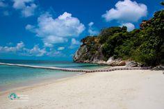 6 außergewöhnliche & geheime Strände auf Koh Phangan Koh Phangan, Thailand, Best Scuba Diving, Koh Tao, Beautiful Islands, Marine Life, Strand, Backpacking, Around The Worlds