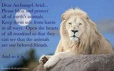 Dear Archangel Ariel...(a dire wish yet ppl still have Hatred in themselves which will nvr go away-a Known. Sad reality we live in.) What is a heart.