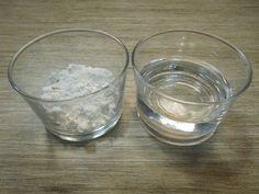 Receta de Cómo eliminar hormigas de la casa