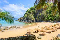 Fernando de Noronha é destino incrível para quem gosta de natureza e praias paradisíacas. Conheça >>> http://www.guiaviagensbrasil.com/pe/fernando-de-noronha/