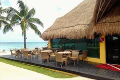 Ultimate Dive Experience - VIP Lounge with afternoon snacks and beautiful Caribbean views Cozumel, Afternoon Snacks, Diving, Vip, Caribbean, Mexico, Lounge, Concept, Beach