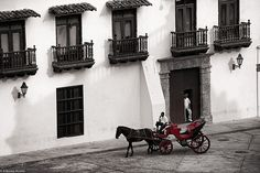 True story, as a kid I would wake up to horses clacking as the wheels of carts would squeak past my window. Cartagena Colombia