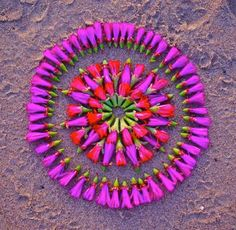 Sacred Flower Circles  by Kathy Klein