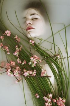 The Green Gallery - Flowers - Portfolio Monia Merlo