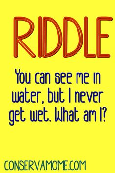 You can see me in water, but I never get wet. What am I? Can you guess the answer? Funny Jokes For Kids, Funny Puns, Jokes Quotes, Funny Quotes, Riddles With Answers Clever, Brain Teasers For Kids, Family Card Games, Thinking Of You Quotes, Fun Brain