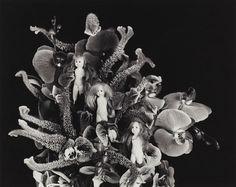 """Paradise Black"", 2014 Nobuyoshi Araki, courtesy of Michael Hoppen Contemporary"