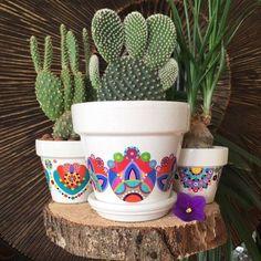 Pot de fleurs pour cactus