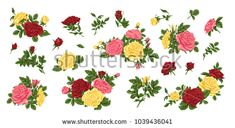 Big set of pink, yellow and red roses, bouquets, flowers and buds.