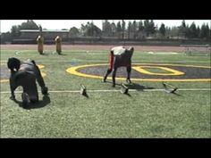 Alvin McKinley Defensive Line Workout - Daily Sports News & Live Stream Fotball Channel Youth Football Drills, Football Defense, Football Training Drills, Football Workouts, Football Quotes, Football Art, Football Stuff, Football Season, Notre Dame Football